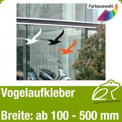 Vogelaufkleber Vogelmotiv 3